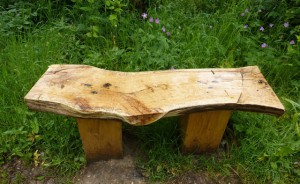 Выбор скамейки для сада