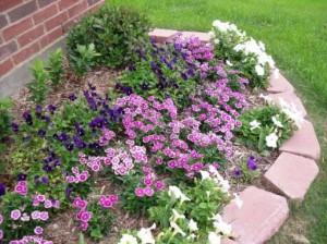 Цветники и клумбы - украшение любого сада