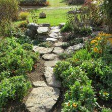 Озеленение и благоустройство загородного дома