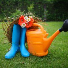 Садоводство и огородничество для начинающих